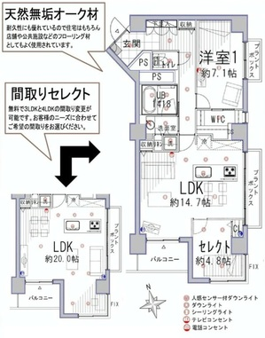 南青山高樹町ハイツ504 (間取り2).jpg