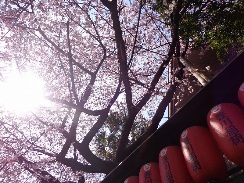 豊川稲荷東京別院 (2)